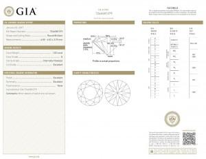 Das GIA-Zertifikat - Diamant-Brillant mit 1,02 Karat in der besten Farbe D (River+) und höchsten Reinheitsstufe IF (lupenrein)