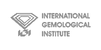 igi-logo200x100 grey